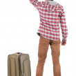 Back view of traveling man with suitcase pointing. Rear view peo — Stock Photo #28380047
