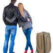 Back view of young couple traveling with suitcase. — Stockfoto #39359825