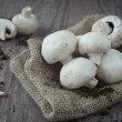 Mushrooms — Stock Photo #16048127