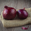 Red onions — Stock Photo #16272197