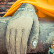 Buddha hand — Stock Photo