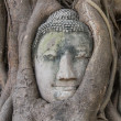 Stock Photo: Buddhface