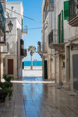 Beautiful Puglia — Stock Photo