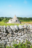 Trullo stone house — Stock Photo