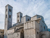 Molfetta Cathedral — Photo