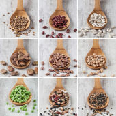 Mixed legumes collage — Stock Photo