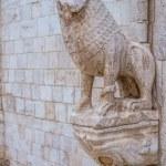 Stone lions — Stock Photo #36413431