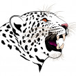 Vector leopard — Stock Vector