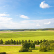 Summer Landscape — Stock Photo #17142243