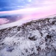 Winter Landscape - Foto Stock