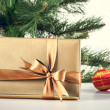 Gift box — Stock Photo #14472789