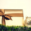 Gift box — Stock Photo #14472807