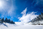 WInter Landscape — Stockfoto