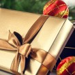 Gift box — Stock Photo #16931537