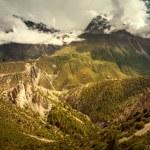 Beautiful Asian landscape — Stock Photo #44328501