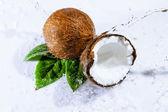 Cracked coconut  — Stock fotografie