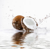 Cracked coconut  — Stock Photo