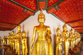Buddha in Wat Pho. Thailand — Stock Photo