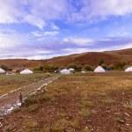 Yurt camp — Stock Photo #48475055