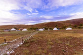 Yurt camp — Stock Photo