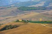 Tuscan peyzaj — Stok fotoğraf