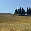 Tusclandscape — Stock Photo #22964202