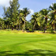 Golf field - Foto Stock