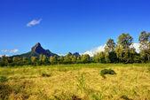 Mauritius peyzaj — Foto de Stock
