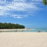 Mauritius island — Stock Photo #26404531