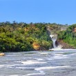 Murchison Falls  — Stock Photo