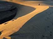 Dune Maspalomas — Foto de Stock