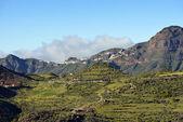Gran Canaria — Stock Photo