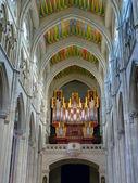 在大教堂拉阿尔穆德纳器官 — 图库照片