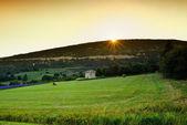 Provence rural landscape — Stock Photo