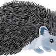 Hedgehog — Stock Vector #34301667