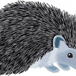 Stock Vector: Hedgehog
