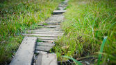 Old wooden footpath through grass — Stock Photo