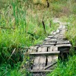 Stock Photo: Dilapidated wooden footpath