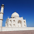 Taj Mahal, Agra — Stock Photo #18329491