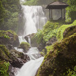 Stock Photo: Beauty waterfall