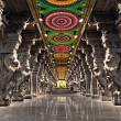 Meenakshi hindu temple — Stock Photo #20252677