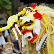 Stock Photo: Balinese New Year