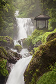 Beauty waterfall — Stock Photo
