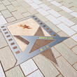 Bruce Lee star — Stock Photo