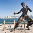 Bruce Lee statue — Stock Photo #31301175
