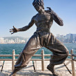 Bruce Lee statue — Stock Photo #31301295