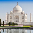 Taj Mahal, Agra — Stock Photo #31304481
