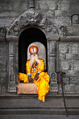 Sadhu at Pashupatinath Temple — 图库照片