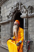 Sadhu at Pashupatinath Temple — Stok fotoğraf