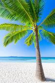 Beauty beach — Stock Photo